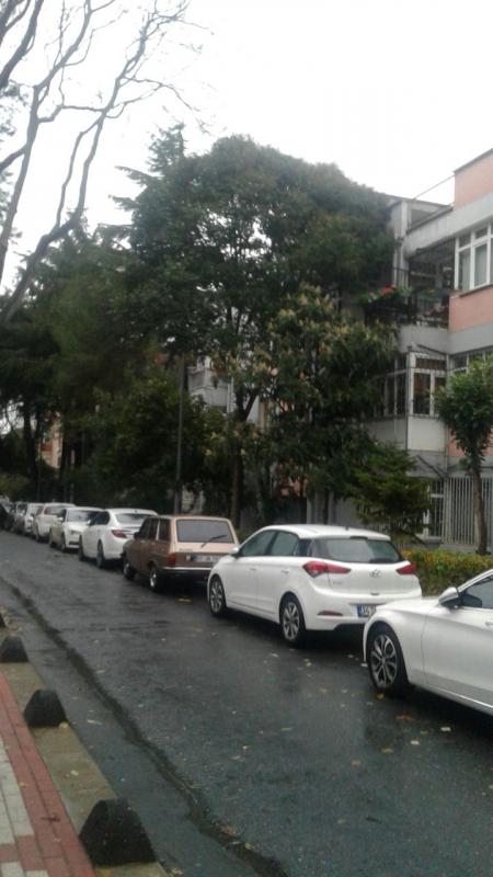 04faef9345e5e Zuhuratbaba iş bankası evleri :Mavi Emlak